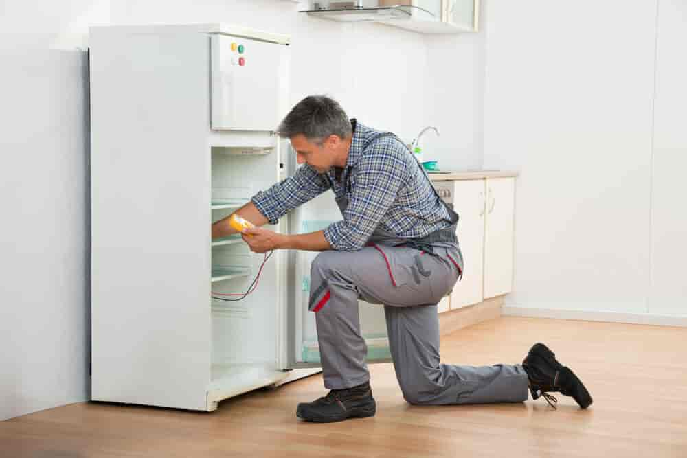 Useful Refrigerator Tips You Need to Know